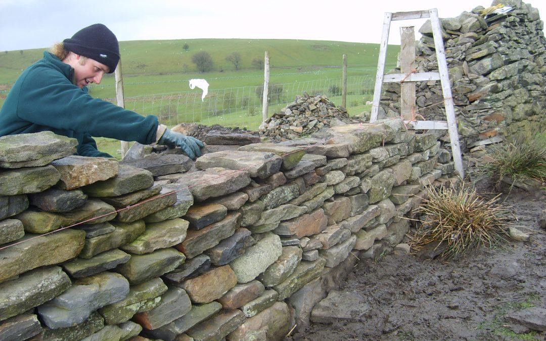 Muri di confine del giardino come realizzarli giardini - Muri da giardino ...