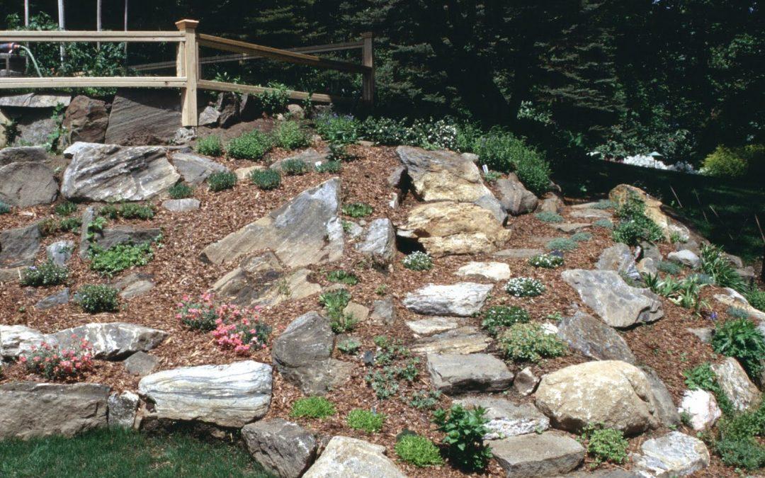 Costruire il giardino roccioso